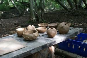 Wild pottery