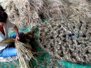 hay rope, weaving with foraged grass