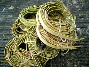 willow bark for weaving