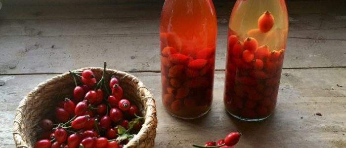 rose hip vinegar recipe