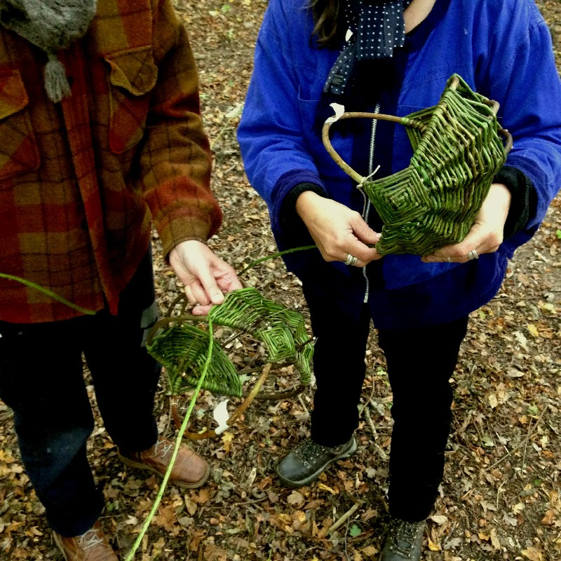 Native Hands woodland courses Sussex