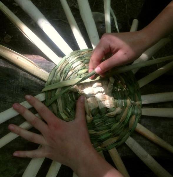 bulrush basket workshop sussex
