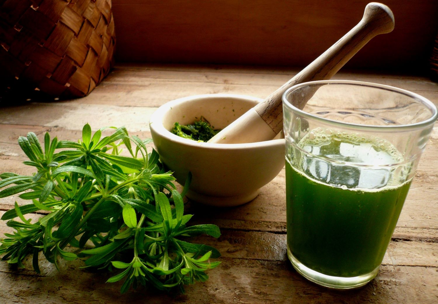 cleavers and nettle juice