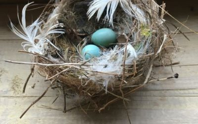 Nests and Baskets