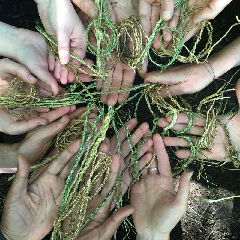 foraging brambles